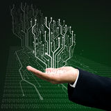 Circuit board tree on hand Stock Images