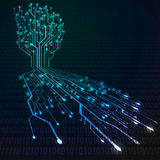 Circuit board in Tree and root shape Stock Photos