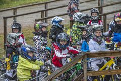 Circuit championship in bmx cycling, excited faces just before t Stock Images