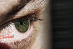 Circuit eye. Eye with a chip reflected royalty free stock photo