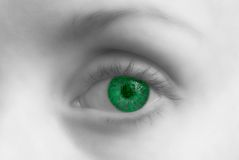 Circuit eye. A photo illustration of a young woman's eye as a circuit Royalty Free Stock Images