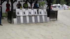 Circuito de carreras del galgo