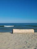 Circuito di collegamento di albero alla spiaggia Fotografia Stock Libera da Diritti