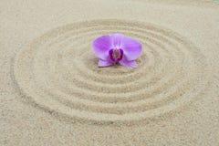 Circuitos na areia Foto de Stock