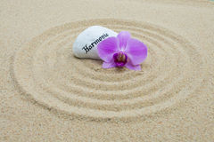 Circuitos na areia Fotografia de Stock Royalty Free