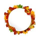 Circulaire de concept d'Autumn Frame Images stock