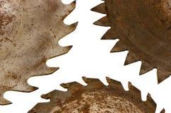 Circulaire a vu des lames de disques d'isolement sur le blanc Photographie stock libre de droits