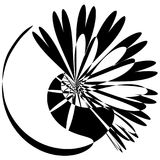 Flower Explosion monochrome silhouette. Circular abstract flower light explosion silhouette. Black and white monochrome Royalty Free Stock Photography