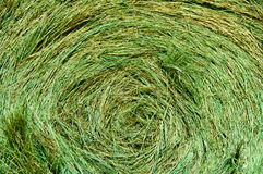 Circular Bale of Green Hay Abstract Background. Close-up of loosely rolled bale of freshly harvested green hay filling frame.  Horizontal. Copy space Stock Photos