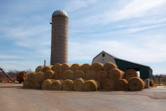 Circular Bales of Hay. A wide angle photo of bales of hay stacked on a dairy farm. The background contains a silo, barn, and blue sky Royalty Free Stock Photos