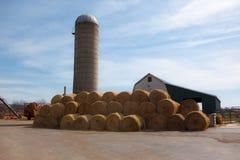 Free Circular Bales Of Hay Royalty Free Stock Photos - 13749218
