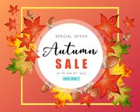 Circular banner for Autumn sale with fall leaves. Circular banner for Autumn sale with colorful seasonal fall leaves and acorns for shopping discount promotion stock illustration