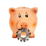 Circular cutter and piggy bank Stock Photos