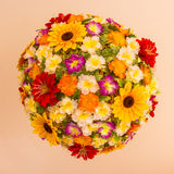 Circular flowers Royalty Free Stock Photography