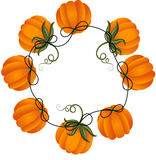 Circular frame with pumpkins Stock Images