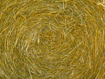 Circular hay bale side on. A side view of a circular hay bale Royalty Free Stock Images