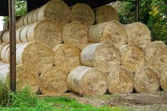 Circular Hay Bales in a Barn Royalty Free Stock Photo