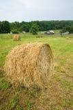 A circular haystack Royalty Free Stock Photos