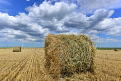 Circular haystack in windmill farm field with. Round wheat haystack in windmill farm field with white grey clouds on blue sky Stock Images