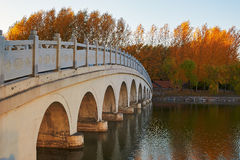 The circular hole bridge autumn trees sunset Royalty Free Stock Photos
