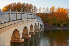 The circular hole bridge autumn trees sunset Royalty Free Stock Photos