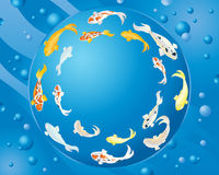 Circular koi carp design Royalty Free Stock Images