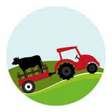 Circular landscape and tractor with trailer with cow Royalty Free Stock Photo