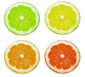 Circular lemons Royalty Free Stock Image
