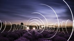 Circular Light Trails In A Lavender Field