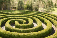 Circular maze Royalty Free Stock Photo