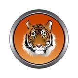Circular, metallic tiger head icon. Orange gradient. Isolated on white royalty free illustration