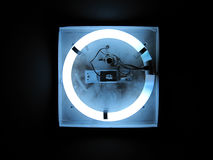 Circular Neon Light stock images