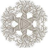 Circular ornament from abstract tree with curling Stock Photos
