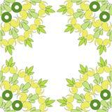 Circular  ornament. Round pattern mandala. Circular  ornament pattern. Round seamless mandala Stock Photography