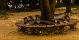 Circular park bench with iron rail backrest. Around a large tree with autumn leaves scattered on the ground Stock Photos