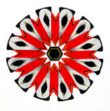 Circular pattered drawing. Royalty Free Stock Image
