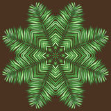 Circular pattern of palm leaves on a brown Stock Photography