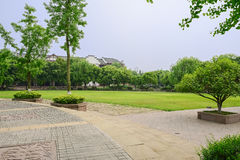 Circular pavement before grassy lawn in sunny summer afternoon Stock Photography