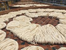 Freshly made noodles Stock Photo