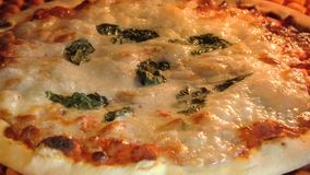 Circular pizza in the oven. Circular pizza with tomato, mozzarella cheese and basil leaves, baking in the oven with boiling mozzarella. Italian recipe stock video
