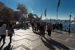 Circular Quay Winter sun flare people Royalty Free Stock Photography