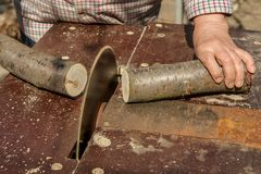 Circular saw cuts wood Stock Images