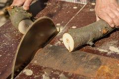 Circular saw cuts wood Stock Photo