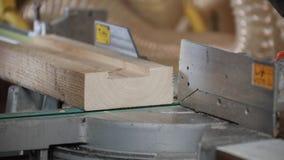 Circular saw. Industrial hand circular saw. saw at work stock video