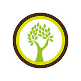 Circular shape emblem with abstract tree Stock Image