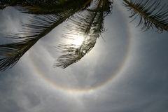 Circular solar halo Stock Photos