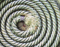 Circular spirally of nautical rope Royalty Free Stock Images