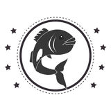 Circular stamp with fish animal marine design. Vector illustration Royalty Free Stock Photos