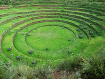 Moray Ruins Sacred Valley Peru Stock Image