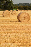 Circular Straw Bales. Freshly rolled golden hay bales in farmers recently harvested agricultural field Stock Photo